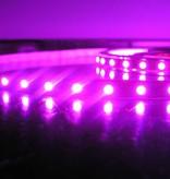 RGB Multicolor 60 LED/m Complete