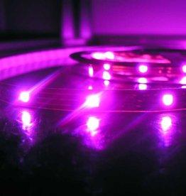 LED en bande RVB - 30 LEDs/m - par 50cm