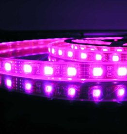 LED en bande RVB 60 LEDs/m Étanche - par 50cm