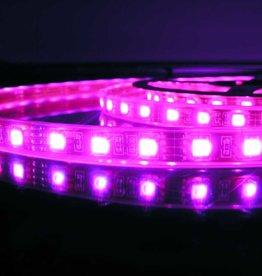 Striscia LED RGB 60 LED/m impermeabile - per 50cm