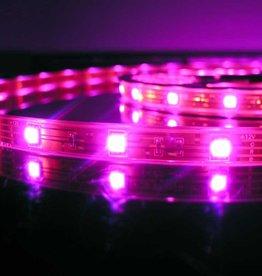 Tira LED Flexible RGB impermeable - 30 LEDs/m - por 50cm