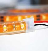 LED en bande auto-adhésive Étanche Rose - par 50cm