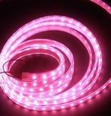LED Strip Pink Waterproof IP65 - per 50cm