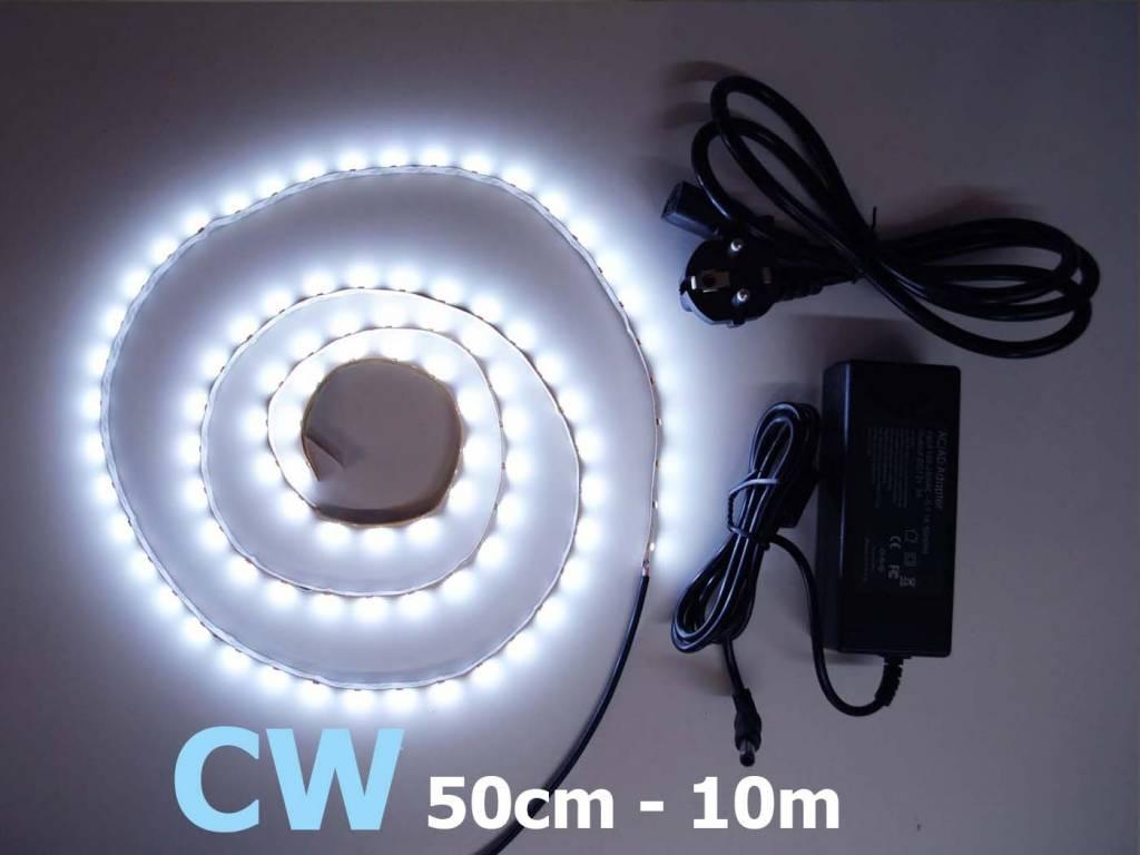 Blanco Frío 60 LED / m completa