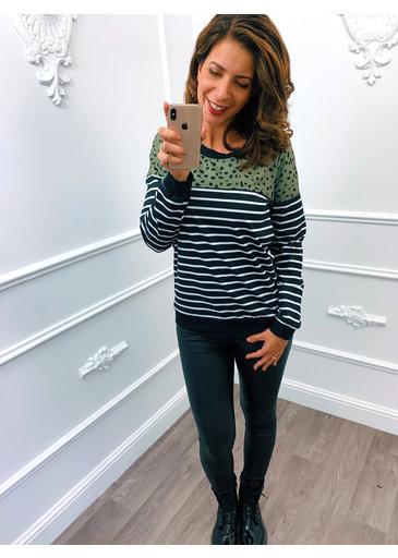 Cheetah Sweater Groen