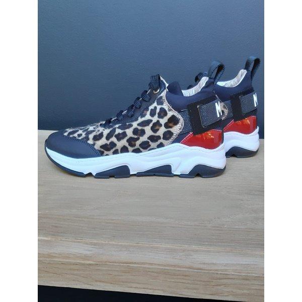 Morelli 91H 50517-scarpa stringa