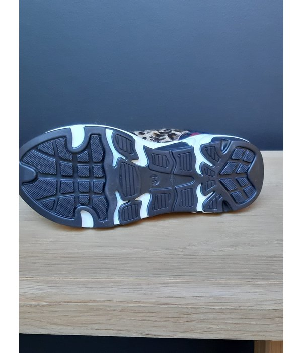 Andrea Morelli Morelli 91H 50517-scarpa stringa