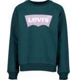 Levi's Levi's 02H E6660 F4B