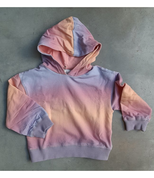 100 Pieces 12E F40177-AA GRADIENT HOODIE PINK