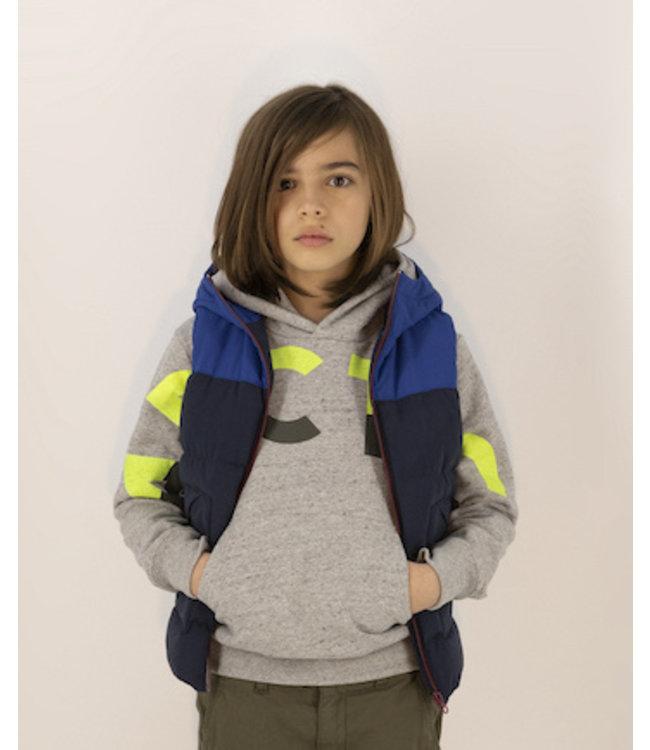 Ao76 grijze hoodie