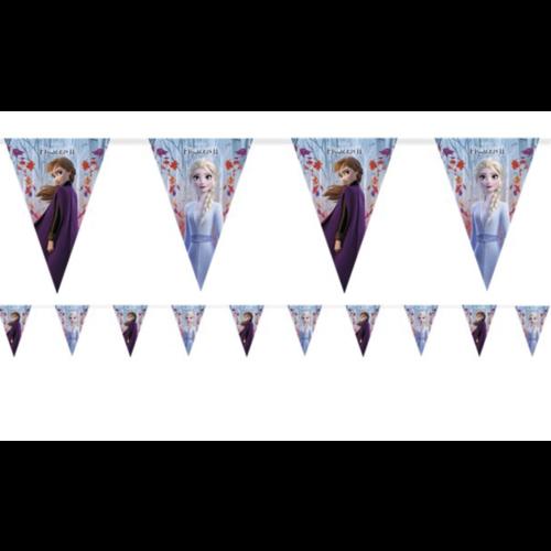 Frozen 2 vlaggetjes