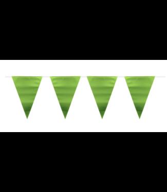 Folat  Metallic groen vlaggenlijn