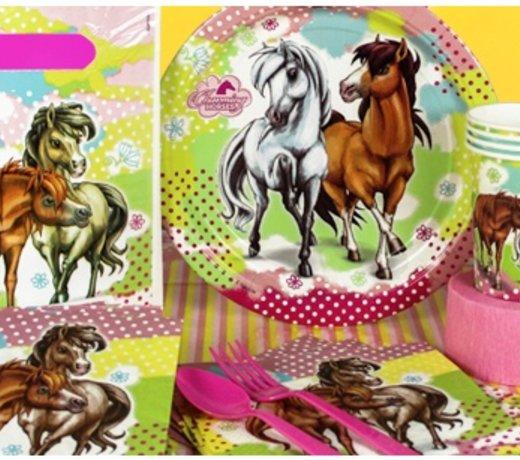 Paarden feestartikelen & versiering