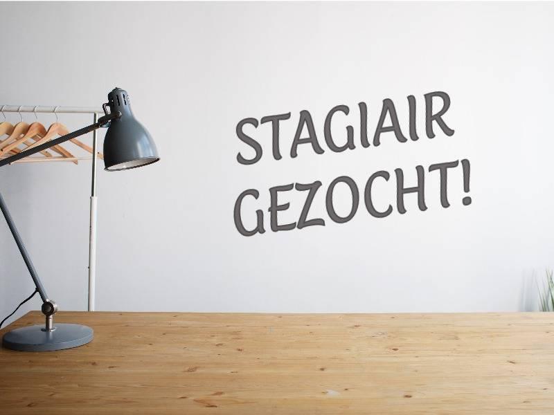 Stagiair Sales & Marketing
