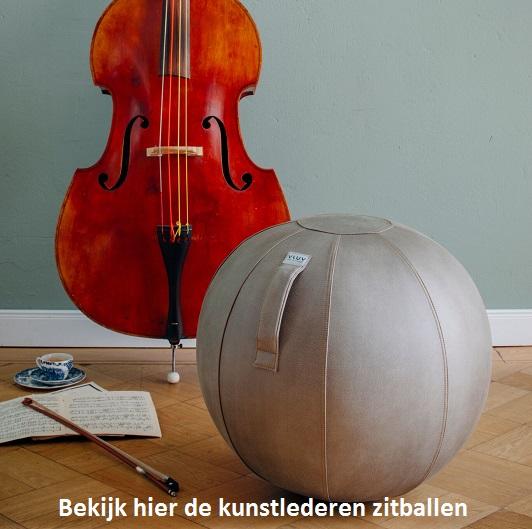 main left banner Zitbal.nl