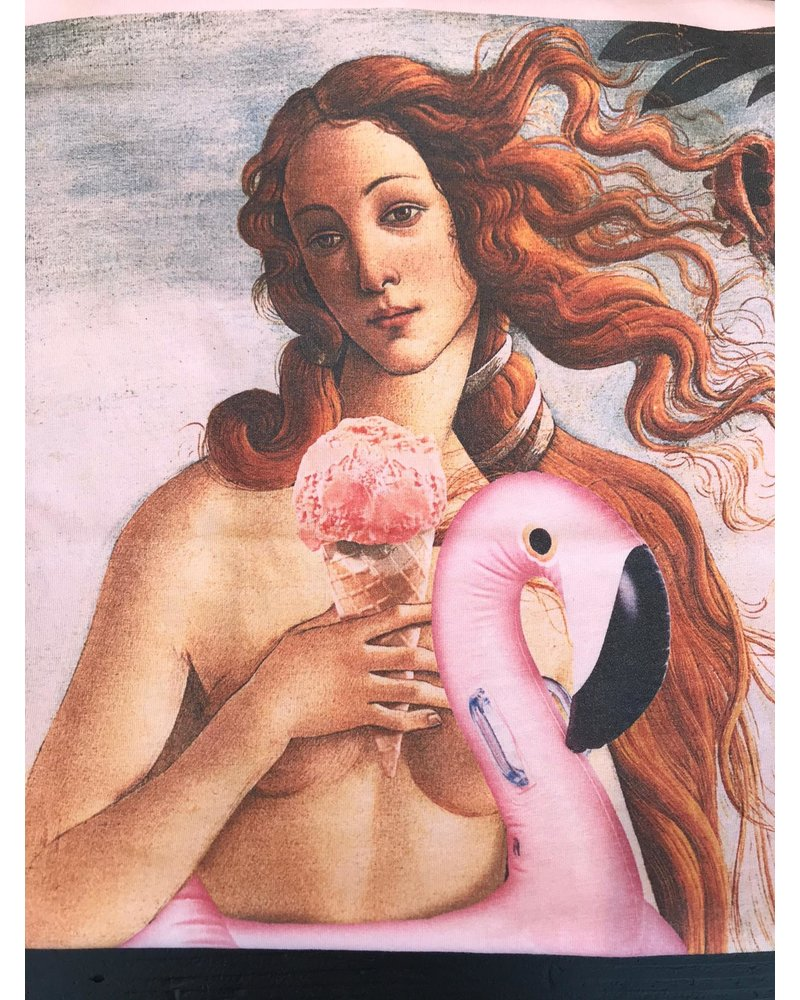 French dude FRENCH DUDE Flamingo