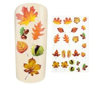 Water Decal Autumn Leaves