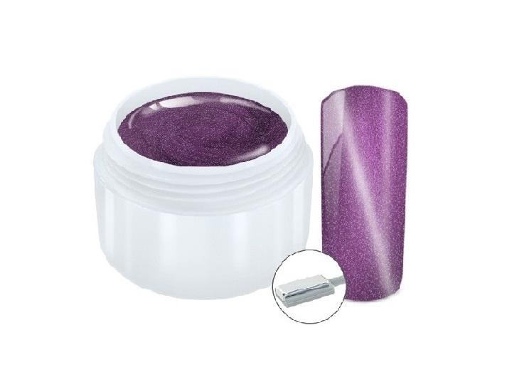 Netama's  Beauty Cat eye magneet gel Purple