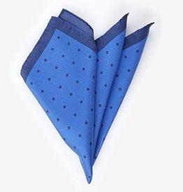 DM Ties taskuliina sininen pilkullinen