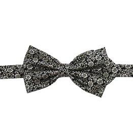 Papillon Miró rusetti Maiolica