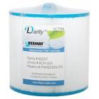 Darlly Spa Filter SC798