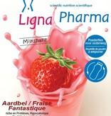 Dieet- & Sport Milkshake Fantastic Aardbei Medical Poederfles