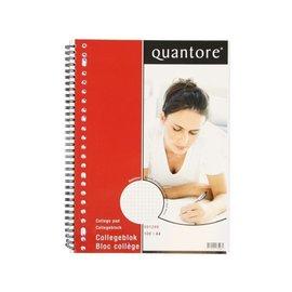 Quantore Collegeblok Quantore A4 23-gaats ruit 5mm