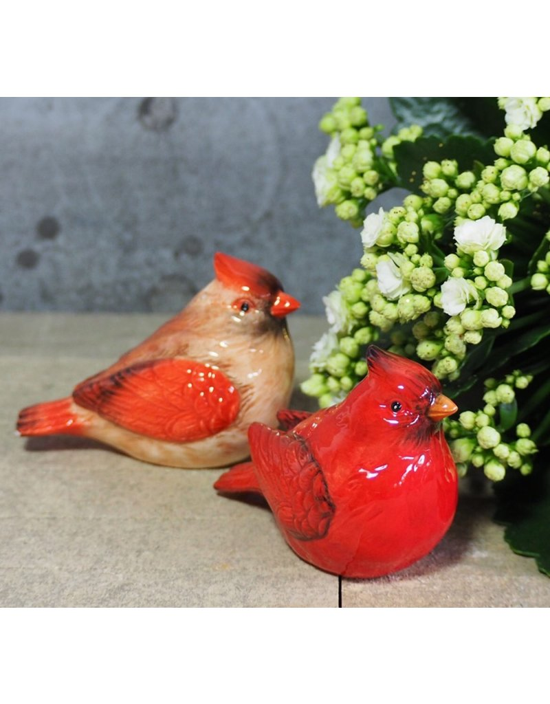 Chehoma Peper- & Zoutstel Red Birds