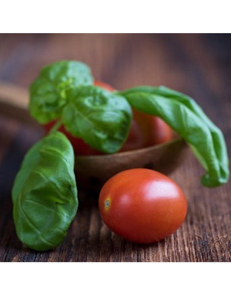 Foodelicious Tomaat - Basilicum Azijn 225ml