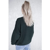 GO WILD GREEN - SWEATER