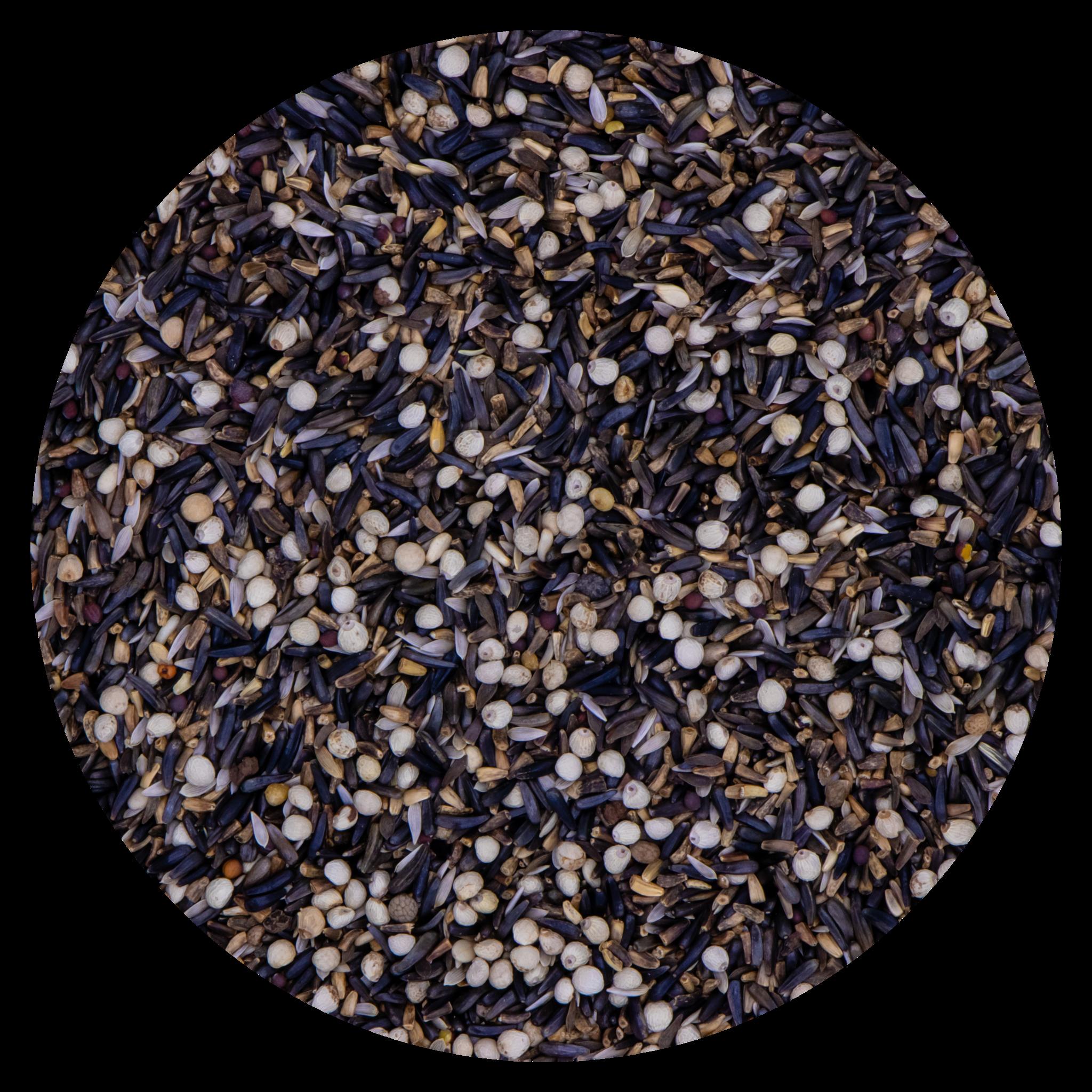 VDC VDCGermination seeds Siskins224