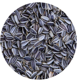 VDC VDC Sunflowerseeds striped - Type Hungarian