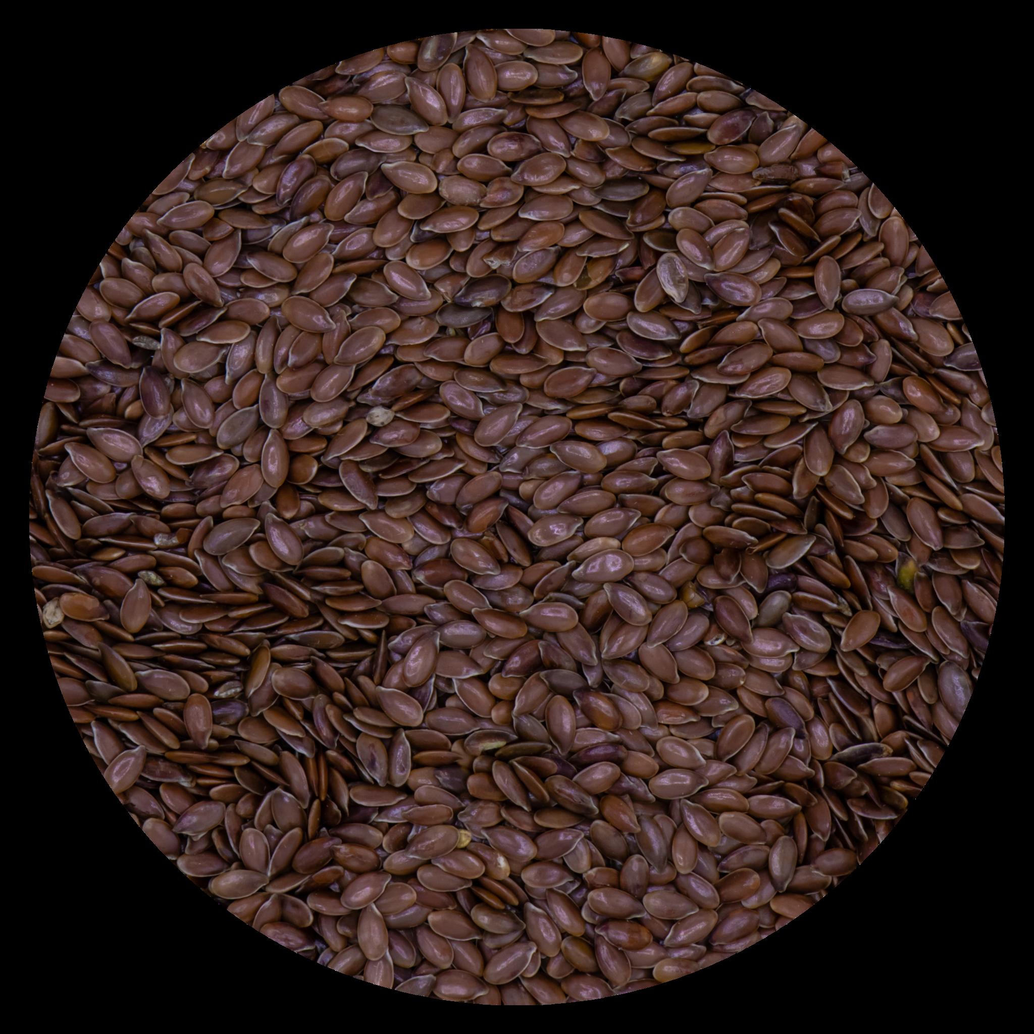 VDC VDC Linseed brown