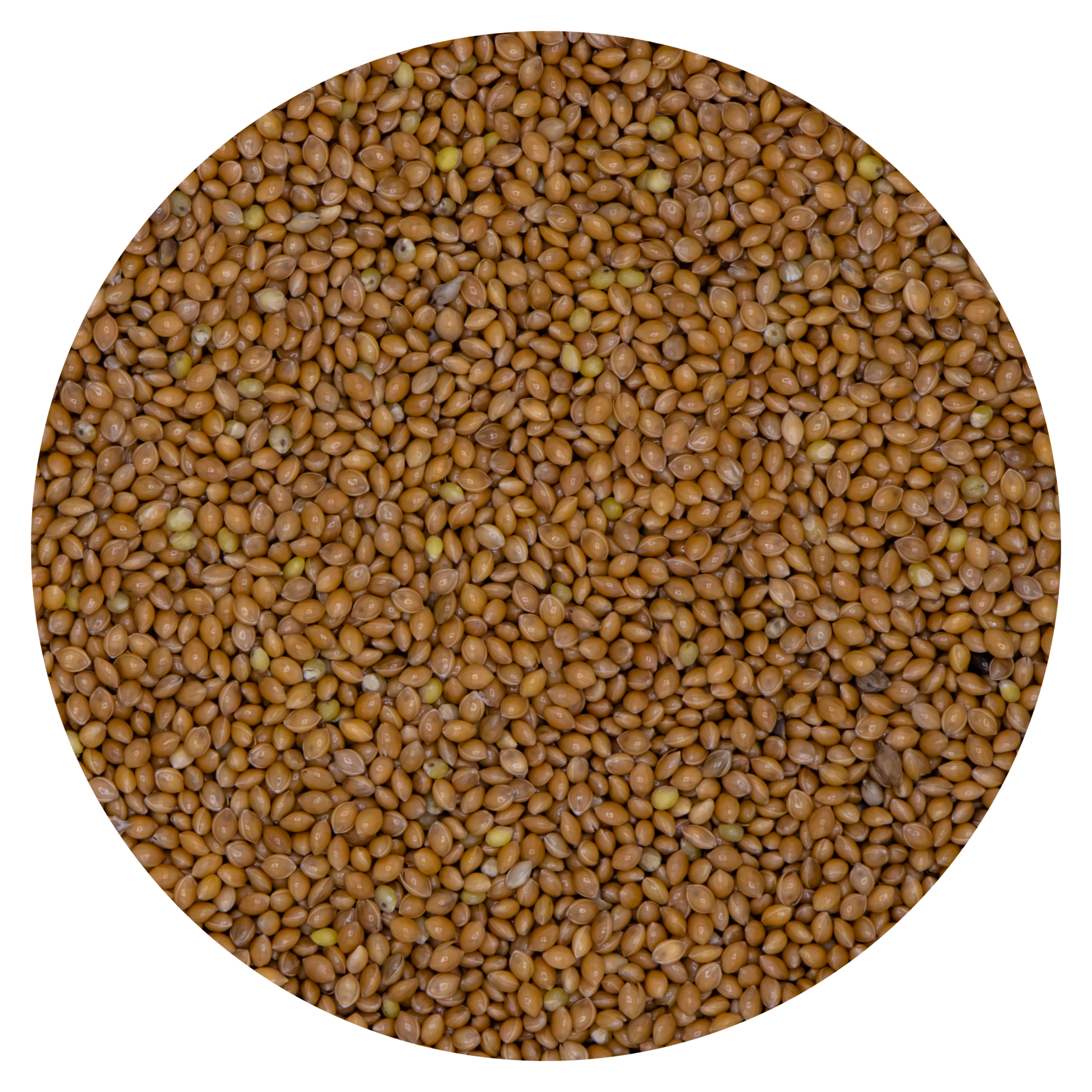VDC VDC Millet geel