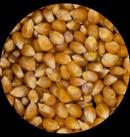 "VDC VDCMaïs - Popcorn""consumptie"" Popcorn Mais"