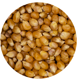 "VDC VDCMaïs - Popcorn""consumptie""DV Popcorn"