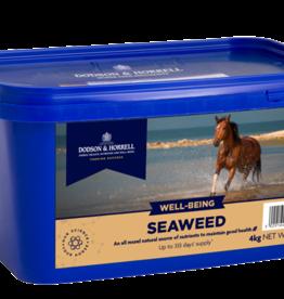 Dodson & Horrell Dodson & Horrell Seaweed