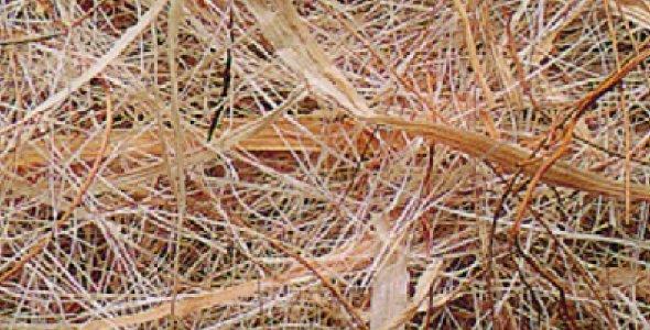 Sisal fibre Sisal Fibre COCCO-SISAL-MELIC-MAIZE bract 500 gr