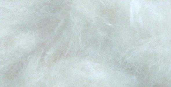 Sisal fibre Sisal Fibre KAPOK 50 gr