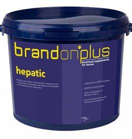 Medvetico Brandon St-Hippolyt Brandon+ Hepatic 3kg