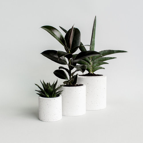 Studio Noah Studio Noah - Speckled White Concrete Planters