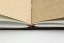 Traveler's TRAVELER'S notebook, passport size, connecting rubber band