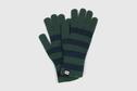 Evolg EVOLG - Touch Screen Gloves, Marsh