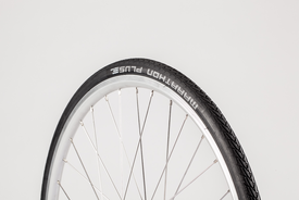 "26""x1.0 Marathon Plus Tyre - CS(26), Bisou"