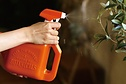 Spray Watering can