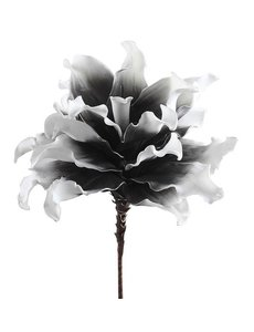 Villa Pottery  Bloem Specials - Zwart-Wit, set van 2