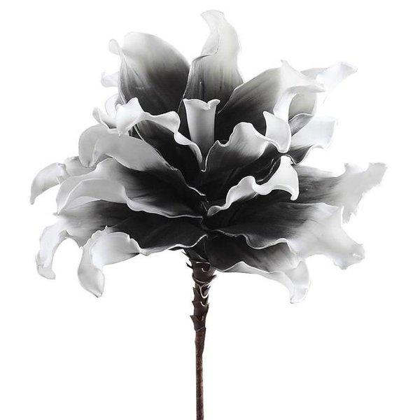 Villa Pottery  Bloem Specials - Zwart-Wit set van 2