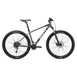 Giant Giant 2020 Talon 29 2 Hardtail Mountain Bike