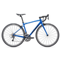 Giant Giant 2020 Contend 2 Road Bike