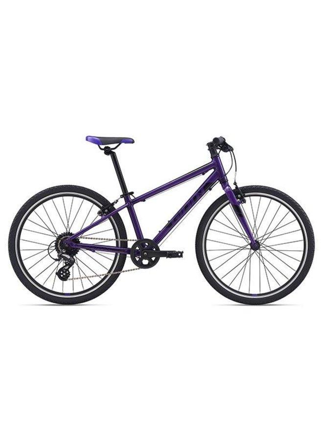 Giant 2021 ARX 24 Kids Bike